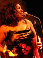 Live at O'Hara's Jazz and Blues Cafe
