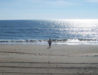 Day_100_-_JL_on_Beach.jpg