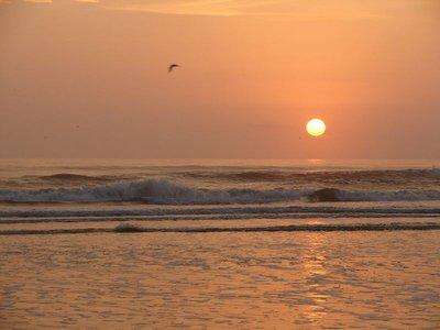 Day_134_-_..c_Ocean.jpg