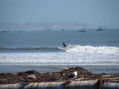 Day_177_-_.._Surfer.jpg
