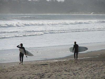Day_195_-_..Surfers.jpg