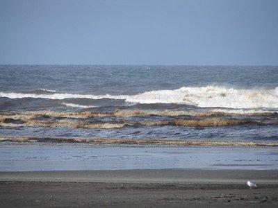 Day_208_-_..m_Waves.jpg