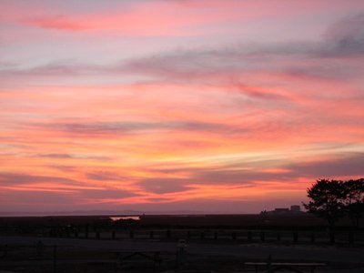 Day_81_-_R.._Sunset.jpg