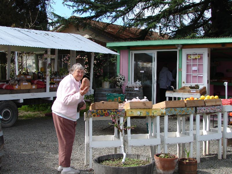 Day 194 - Tony's Fruit Stand, Mom & Yam