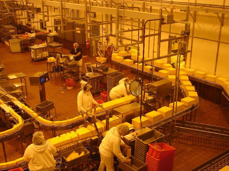 Day 205 - Tillamook, Packaging Cheese
