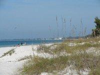 Day_118_-_..a_Beach.jpg