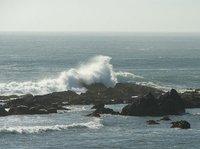 Day_180_-_..st_Surf.jpg