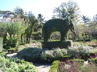 Day_58_-_T..lephant.jpg