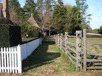 Day_88_-_CW_Fences.jpg
