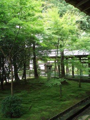 Japan077.jpg