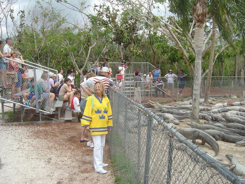 Miami Alligator Farm
