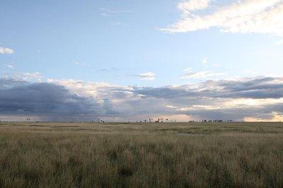 KalahariBlog16.jpg