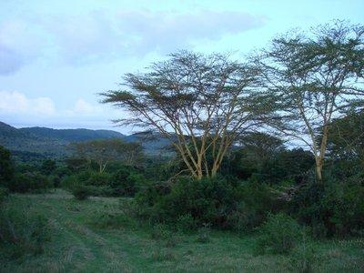 KenyaBlog09.jpg