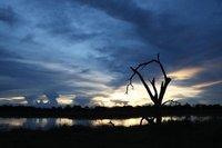 A Moremi Sunset