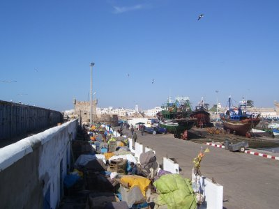 Fishing_Po..saouira.jpg