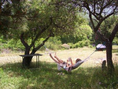 Joys_of_the_hammock_.jpg