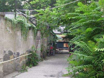 down the passage a bar awaits!