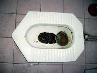asian squat toilet