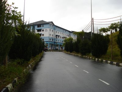 Cameron_Highlands_5.jpg