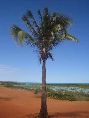 Broome - red earth