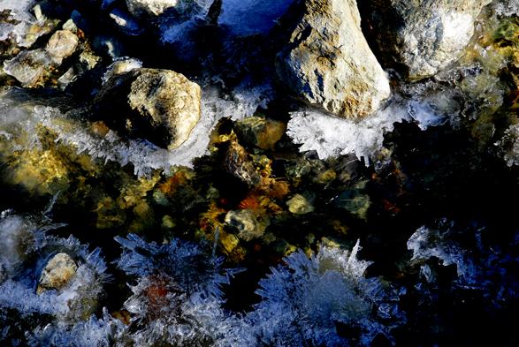 Frosty morning at Elfin lake