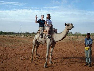 aus_camel1.jpg