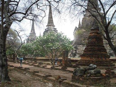 ayuthaya_temple4.jpg