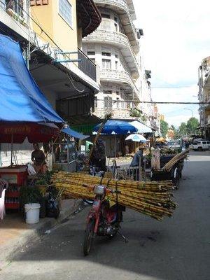 cambod_bikebamboo.jpg