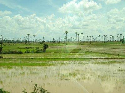 cambod_country2.jpg
