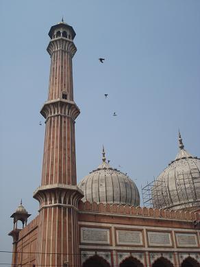delhi_temple1.jpg