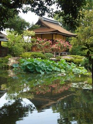 japan_gardenhouse.jpg