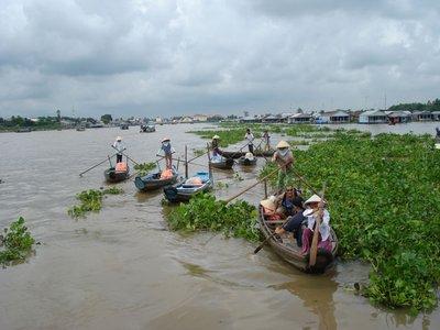 mekong11rowboats2.jpg