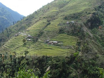nepal_trek_hillside.jpg