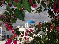 greece2churchflowers
