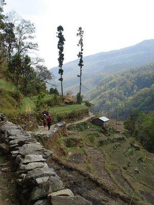 trek_view1.jpg