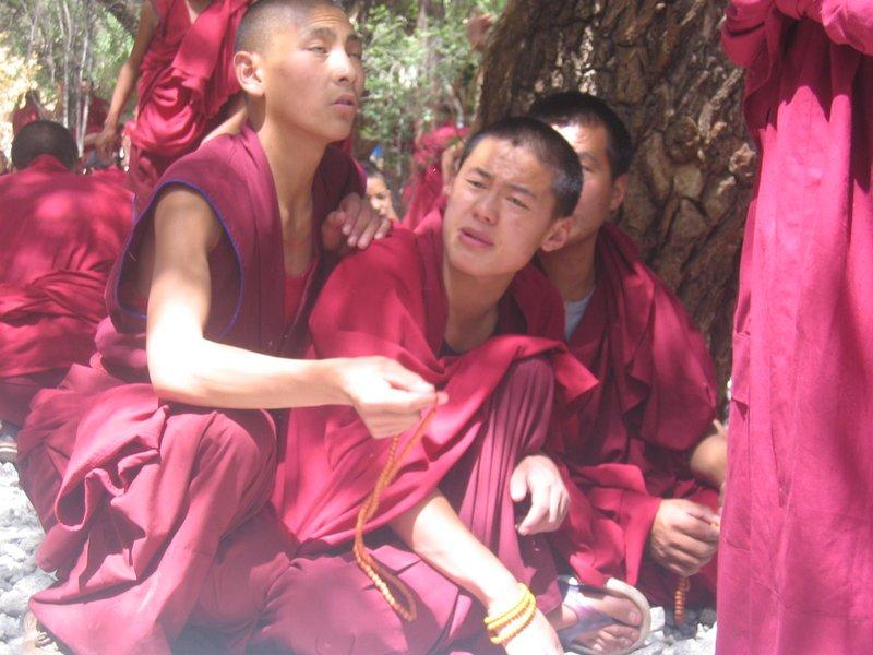 Monks in training
