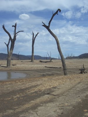 Lake Eildon Drought