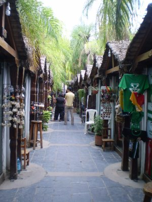 Santa Cruz Markets