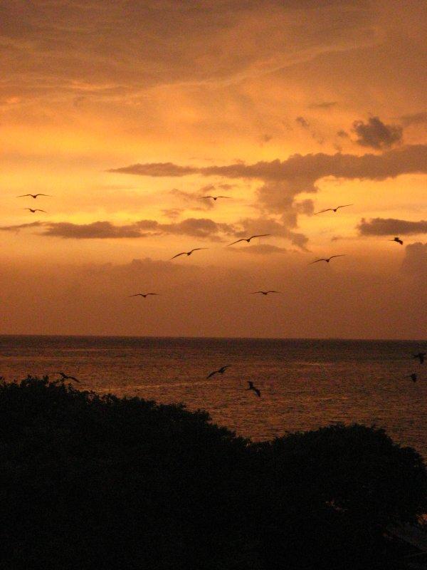 Private Island Sunset