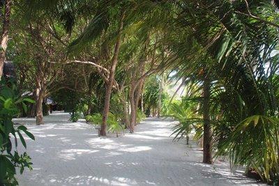 Baros Maldives20170091