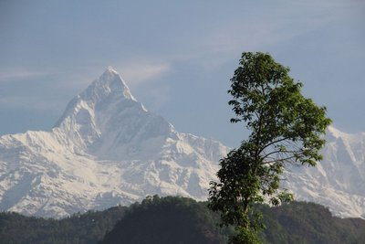 L_Pokhara_001 (157)
