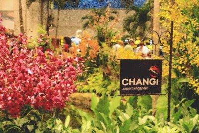 Singapore_1_Changi (9)
