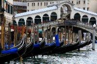 Venice2010 257