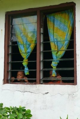 window kids