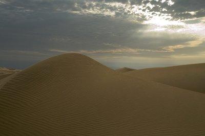 desert1small.jpg