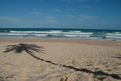deserted_beach.jpg
