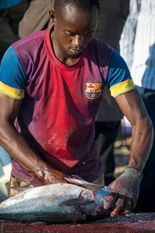 Bosaso Fish Market Puntland Somalia
