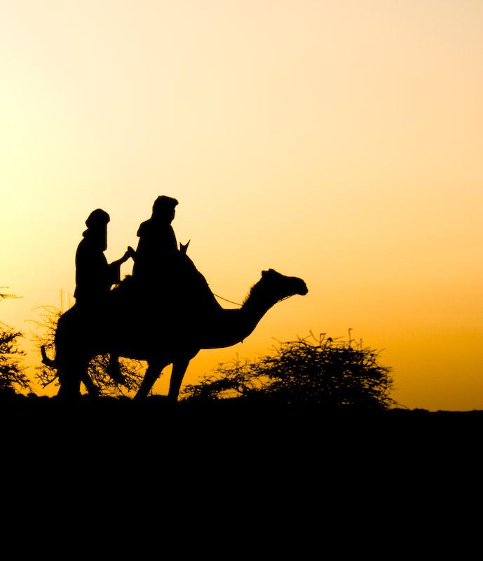 Tuaregs in the Sahara