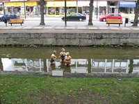Bathing Beauties!