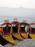 Shikaras on the Dal Lake, Srinagar